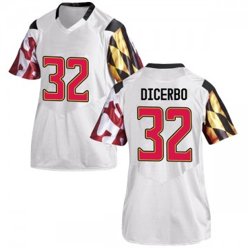 Women's Antonio Dicerbo Maryland Terrapins Under Armour Game White Football College Jersey