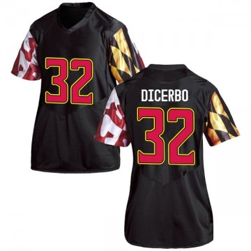 Women's Antonio Dicerbo Maryland Terrapins Under Armour Replica Black Football College Jersey